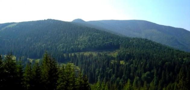 BIHOR: Munţii Pădurea Craiului