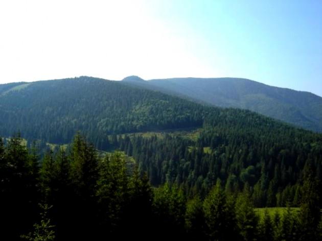 Muntii-Padurea-Craiului-1