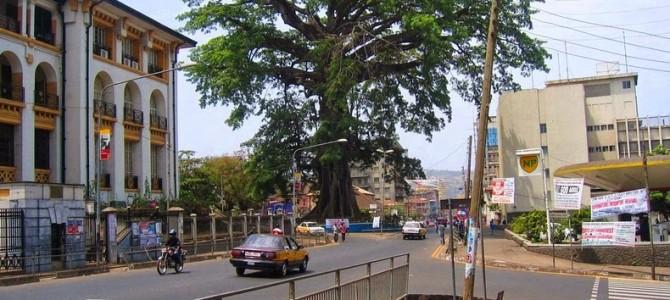 Arborele de bumbac din Freetown
