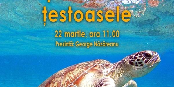 Muzeul Antipa: La plimbare cu ţestoasele