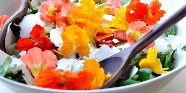 Meniuri inedite la Festivalul florilor comestibile