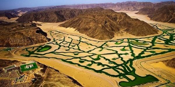Agricultură ecologică în deşerturile din Wadi Rum