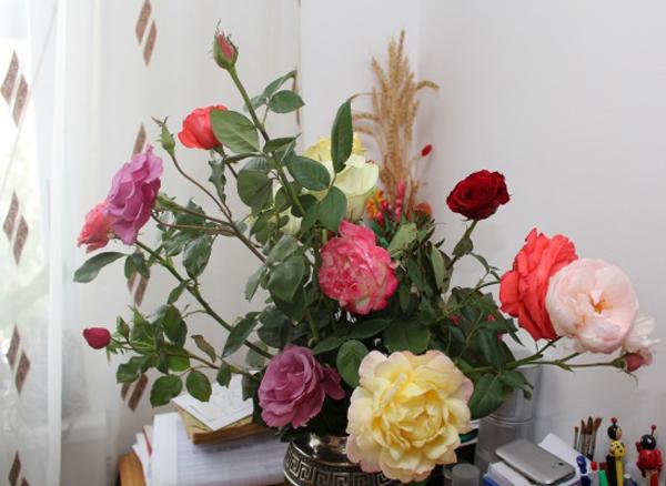 Flori 381