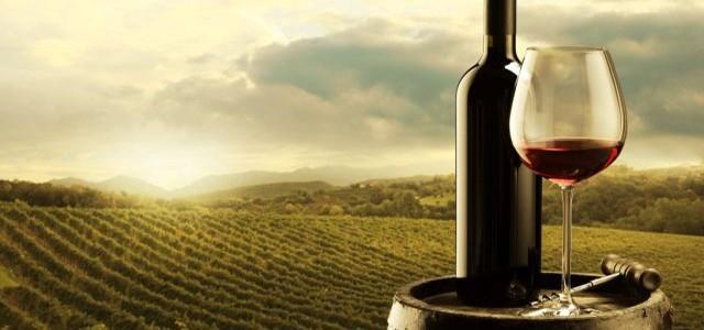 Istoria şi cultura vinului