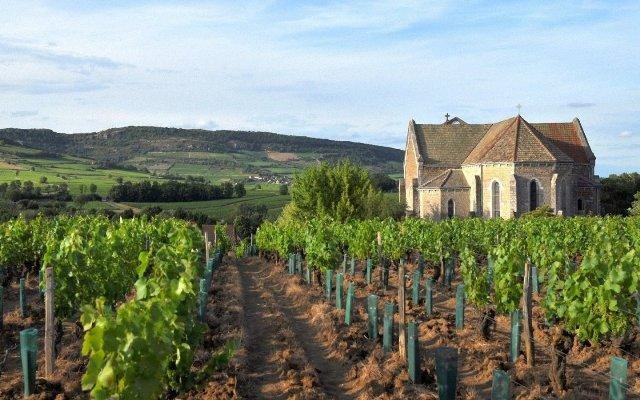 Bourgogne-02