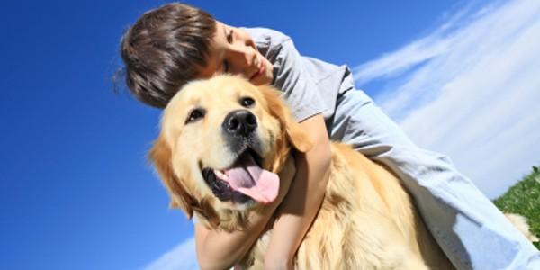 Câinii nu vor să fie strânşi în braţe