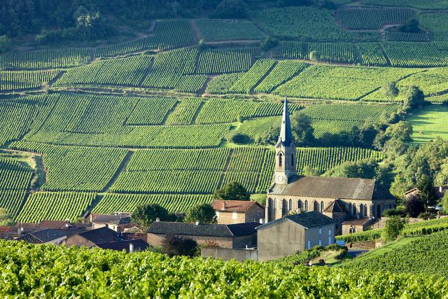 Provence_01