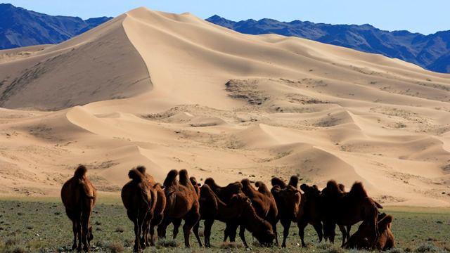 Mongolia-06