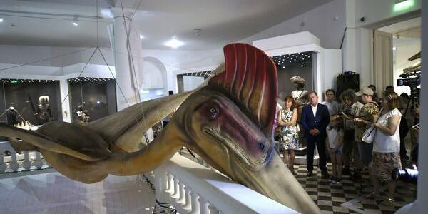 Cel mai mare dinozaur zburător din lume, expus la Muzeul Antipa