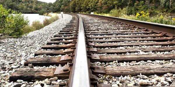 """Căutătorii de comori nu au găsit """"trenul cu aur nazist"""""""