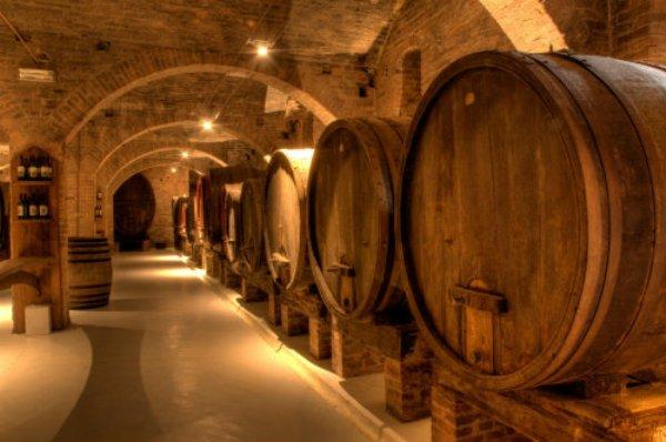 viticultura-Italia-03