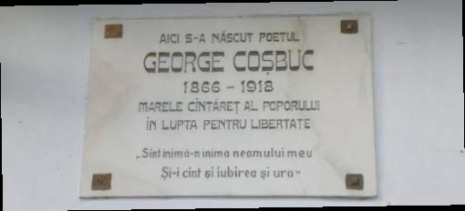 casa-memoriala-george-cosbuc-03
