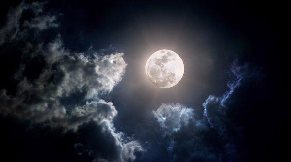 luna-neagra-02