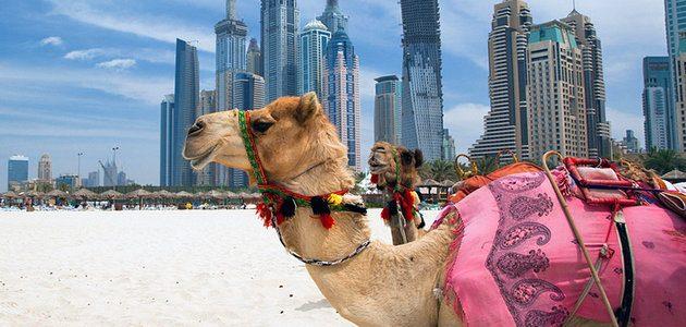 Emiratele Arabe Unite – istorie, repere geografice, turism şi gastronomie