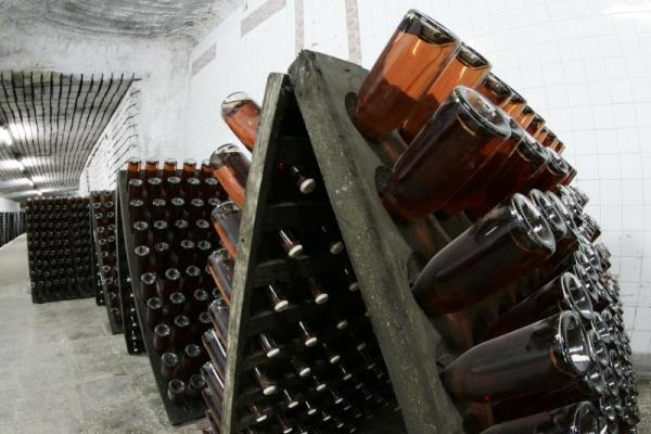 vinuri-rep-moldova-01