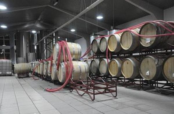 vinuri-rep-moldova-03