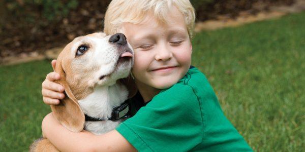 Modul în care ne adresăm câinilor ar trebui adaptat în funcţie de vârsta acestora