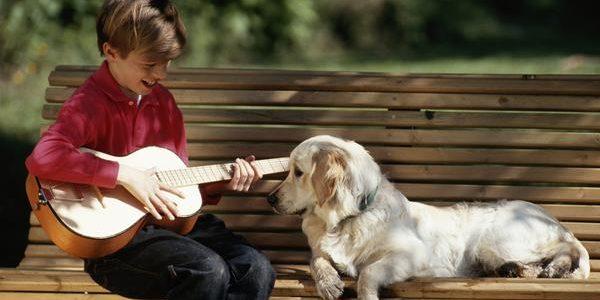 Câinii preferă să asculte melodii reggae şi soft rock, nu numai muzică clasică
